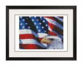 ALL STITCHES - Patriotic Eagle Cross Stitch Pattern .PDF -520