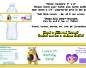 Special Agent Oso Water Bottle Labels - PRINTED FOR YOU - Birthday Party Supplies Favors