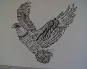 This picture is a bauld eagle drawing done in pen and ink