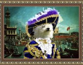 Bolognese Dog  Fine Art Canvas Print
