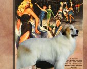 Great Pyrenees Vintage Art Poster Canvas Print  - LA DOLCE VITA  Movie Poster NEW Collection