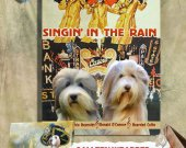 Bearded Collie Vintage PRINT POSTER Canvas Print - Singin in the Rain Movie Poster