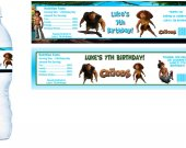 The Croods Movie Water Bottle Labels - PRINTED FOR YOU - Birthday Party Supplies Favors Caveman Stone Age
