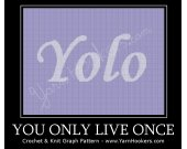 Yolo - You Only Live Once - Afghan Crochet Graph Pattern Chart - PDF Download
