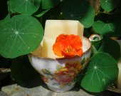 Mothers Love ~ Fresh, All Natural, Avocado & Cocoa Butter Kettle crafted Soap